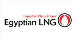 Egyptian Liquefied Natural Gas NG Company SAE (ELNG)